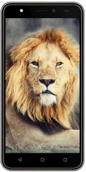 Intex Aqua Lions T1 Price in Kuwait