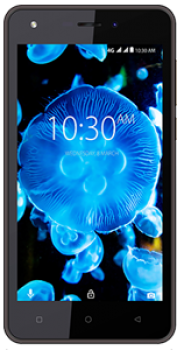 Karbonn K9 Kavach 4G Price in Egypt